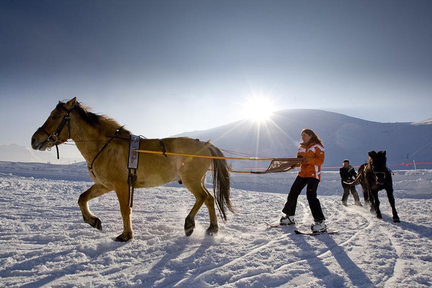 © Laurent Salino Ski Joering (8)
