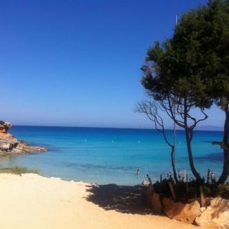 'Ibiza'