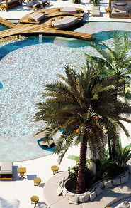 Best of Ibiza