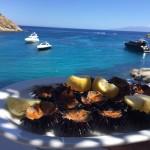 Mykonos, nos adresses nouvelles et incontournables