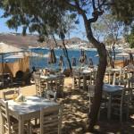 nikolas taverna1