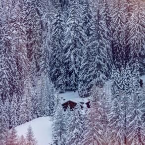 Entre fusion avec la nature et neige 2.0