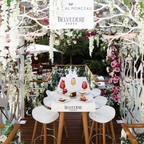 Le jardin suspendu de Belvedere