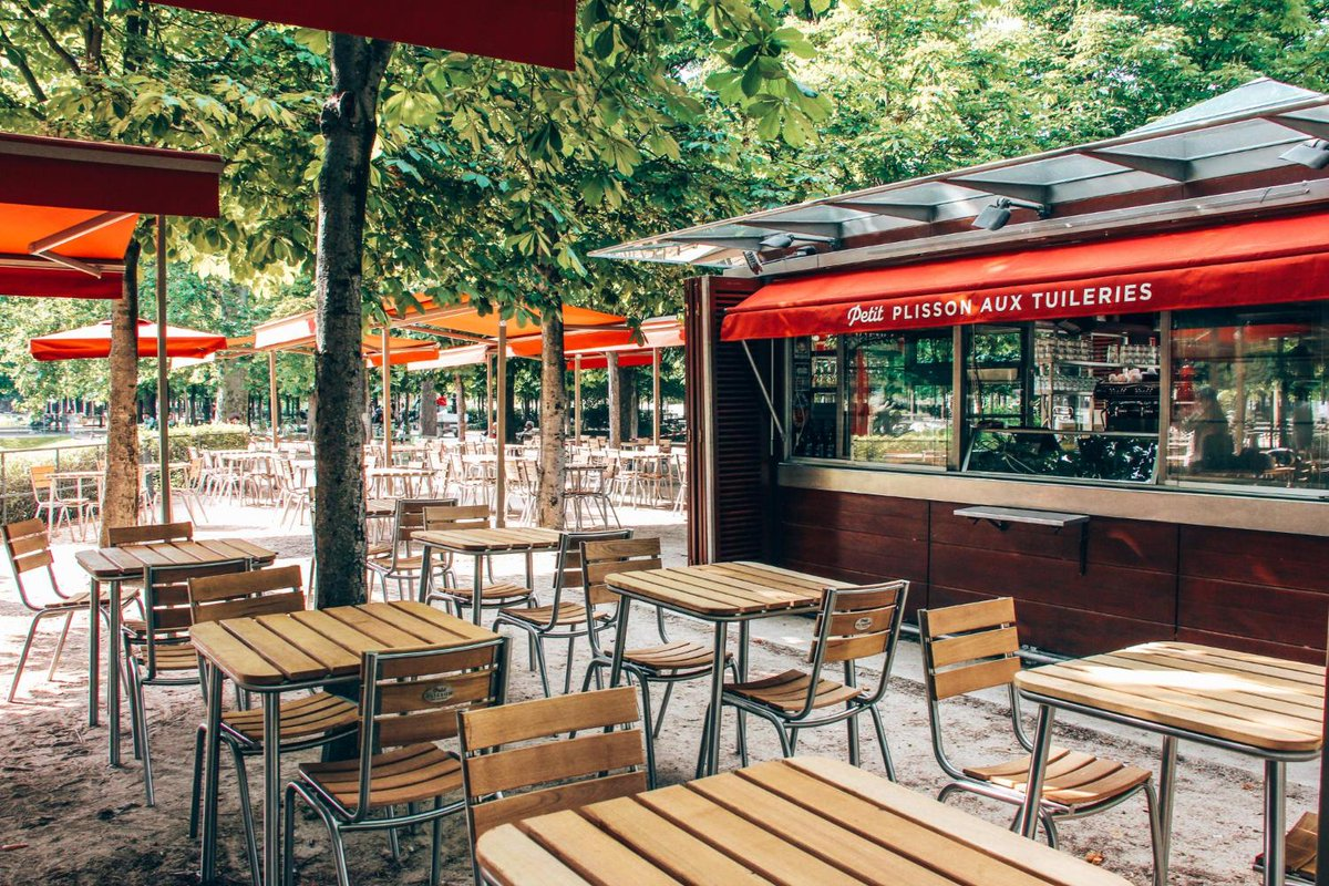 Petit Plisson au Jardin des Tuileries